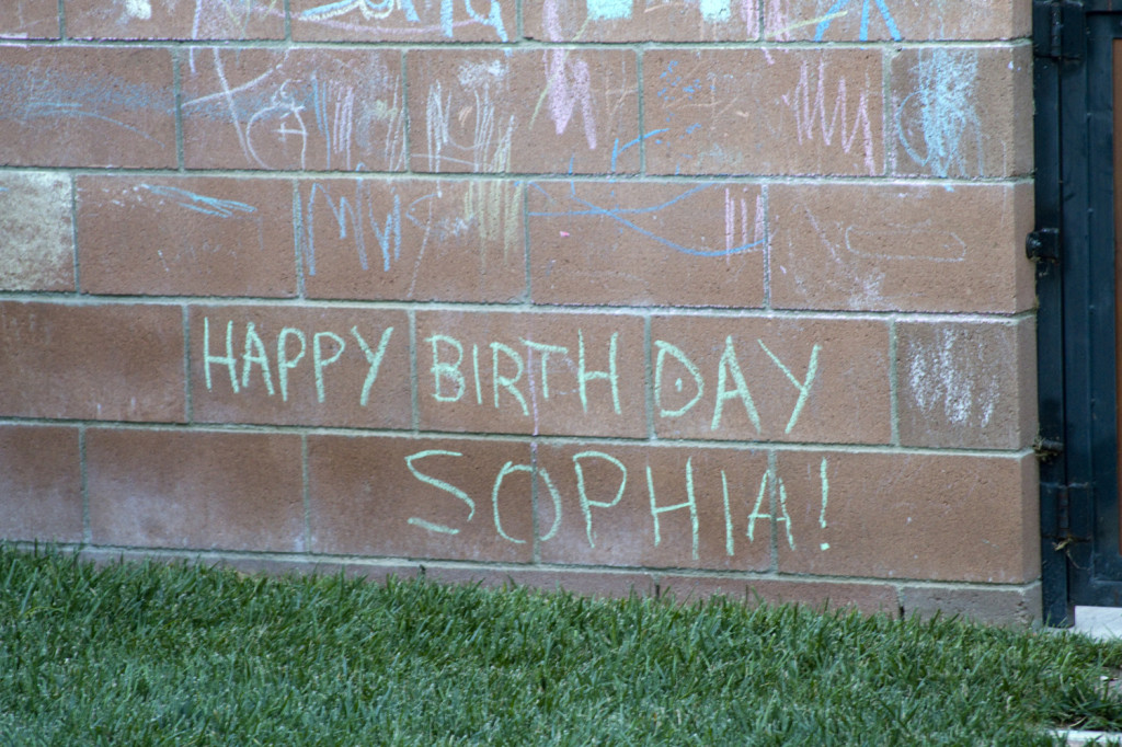 Happy Birthday Sophia!